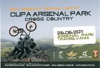CupaArsenalPark2011